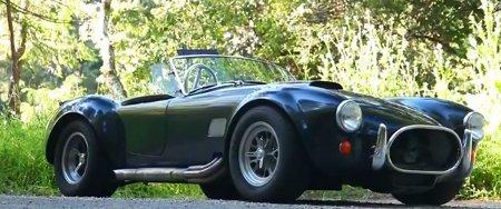 Cobra 1966